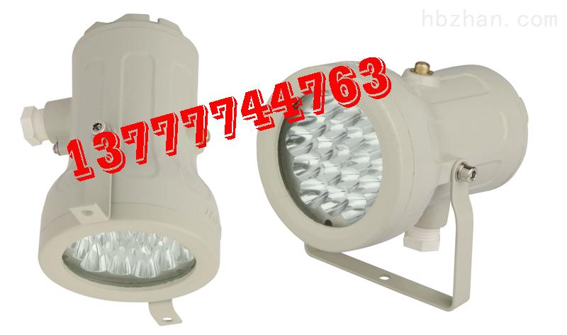 BSD96LED防爆视孔灯