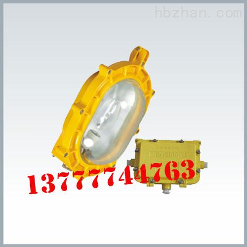 BFC8120内场防爆强光泛光灯 室内防爆泛光灯