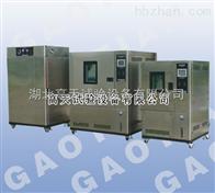 225L可程式恒温恒湿试验箱