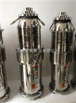 天津海水潜水电泵型号
