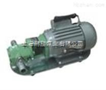 单相齿轮油泵 便携式齿轮泵