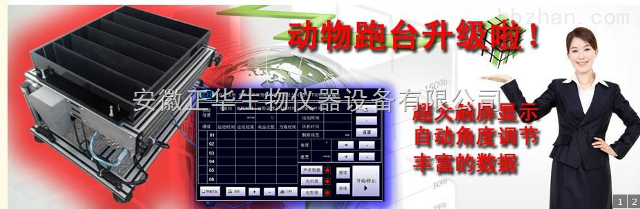 小鼠实验跑台-产品报价-安徽正华生物仪器设备有限