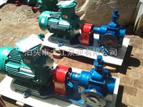 包邮 YCB10-1.6型圆弧齿轮泵 齿轮油泵 厂家直销