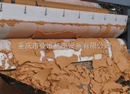 河南带式压榨过滤机品牌