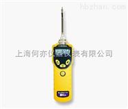 华瑞 MiniRAE 3000 VOC检测仪PGM-7320