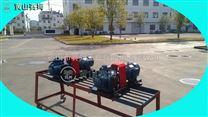 HSNH2200-42W1三螺杆泵