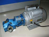 WCB油库输油泵/便携式油泵/手提式齿轮油泵/微型油泵/手提齿轮泵