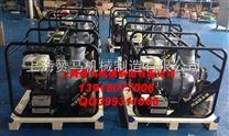 上海赞马本田13马力6寸汽油机水泵