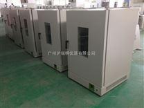 鼓风干燥箱DHG-9240A,DHG-9240A