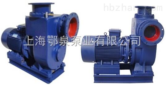 雙吸式大流量汙水自吸泵