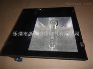 FAT52-N250三防泛光灯