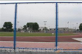 安装足球场围网厂家