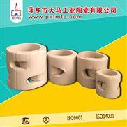 新型耐腐蚀陶瓷鲍尔环