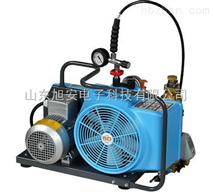 JUNIOR II高壓空氣壓縮機德國寶華空氣充氣泵廠家