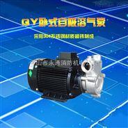 浙江品牌小型三相不锈钢自吸溶气泵