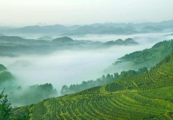 15则回南天防潮除湿方法大全-技术文章-杭州特