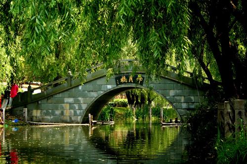 温州市五水共治_五水共治将温州七都街道打造成生态之岛_五