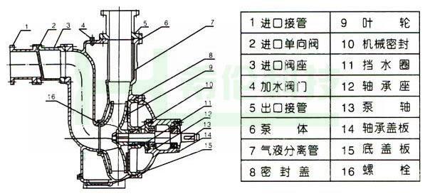 ZWL自吸排污泵结构图