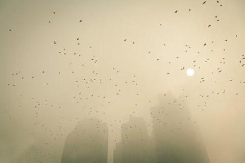 雾霾高清图片素材