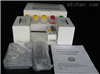 豚鼠钩端螺旋体IgG(Lebtospira)ELISA分析试剂盒