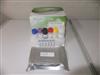 裸鼠环加氧酶2(COX-2)ELISA分析试剂盒