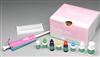 猪E选择素(E-Selectin/CD62E)ELISA试剂盒