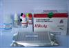 兔核因子κB受体活化因子配基(RANKL)ELISA试剂盒